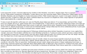 IE 11 on Win 8.1